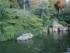 Бряг на езеро