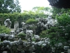 Китайска градина