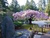 japanese_garden_100306_114