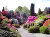 landscape-design-plans-rock-flower-garden-margaret-anne-designing