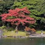 koishikawakorakuengardentokyo-benzaitennomiyashrineonhoraijimahoraiisland-kimonberlingribecowiki
