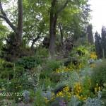 Алпинеум с цветя.