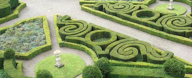 Озеленяване  Англия