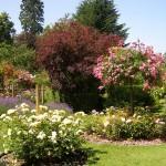 Цъфтяща градина