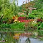 Езеро и цветя