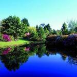 Озеленяване Нова Зеландия