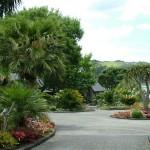 Тропичен пейзаж