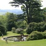 Водна площ в парк
