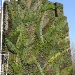 greenwall_patrickblanccaixa-madrid