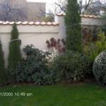 градина с вечнозелени