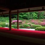 Японска градина с азалии