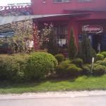 Подрязани храсти