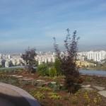 Озеленяване на покрив