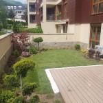 покривна градина