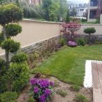 градина с помпон